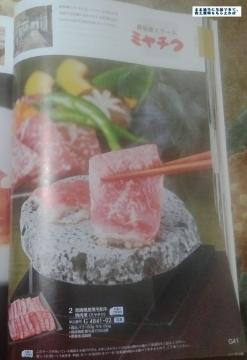 メガチップス みやちく カタログ 201503