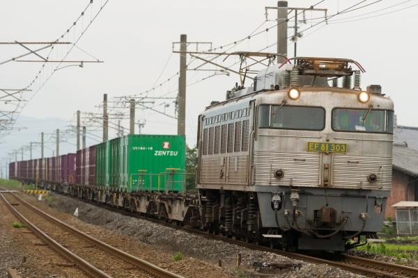 EF81 303