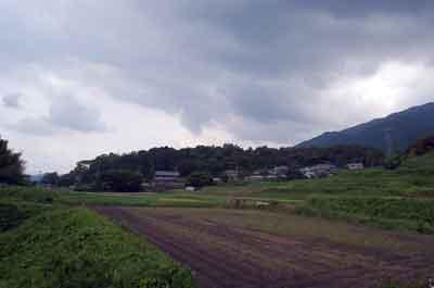 15.6.23笛吹神社遠景