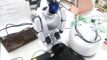 ぱるDSC_1428