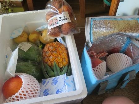 フルーツいっぱい