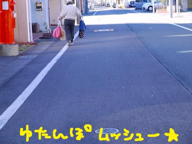 P1650275.jpg