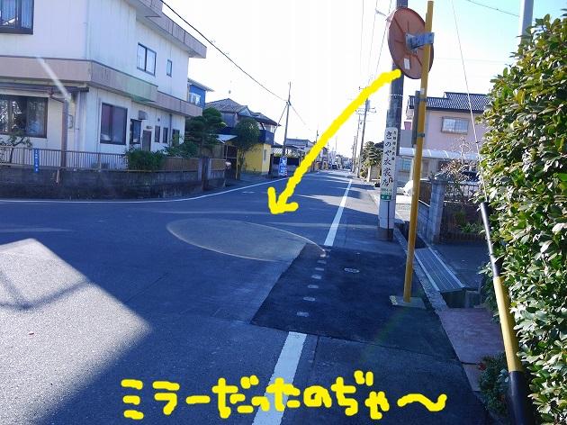 P1660277.jpg