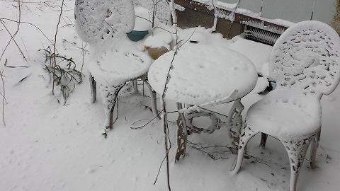 暴風雪20150107_144325