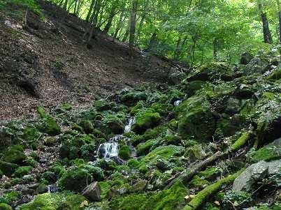 ウノタワへの谷の小滝