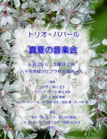 真夏の音楽会ババール2015 (2)