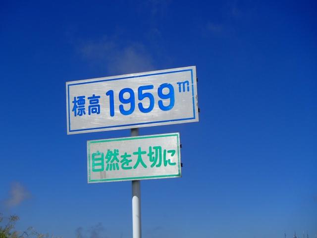 P8010226.jpg