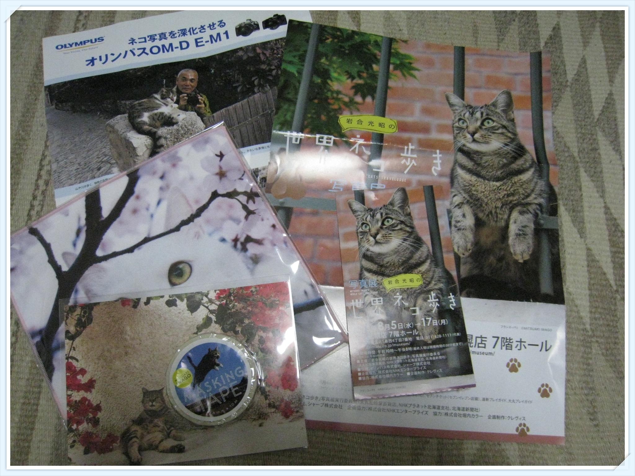 cats_806.jpg