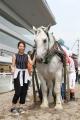 ばん馬イベント 1