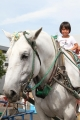 ばん馬イベント 6