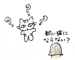 img045 - コピー (3)