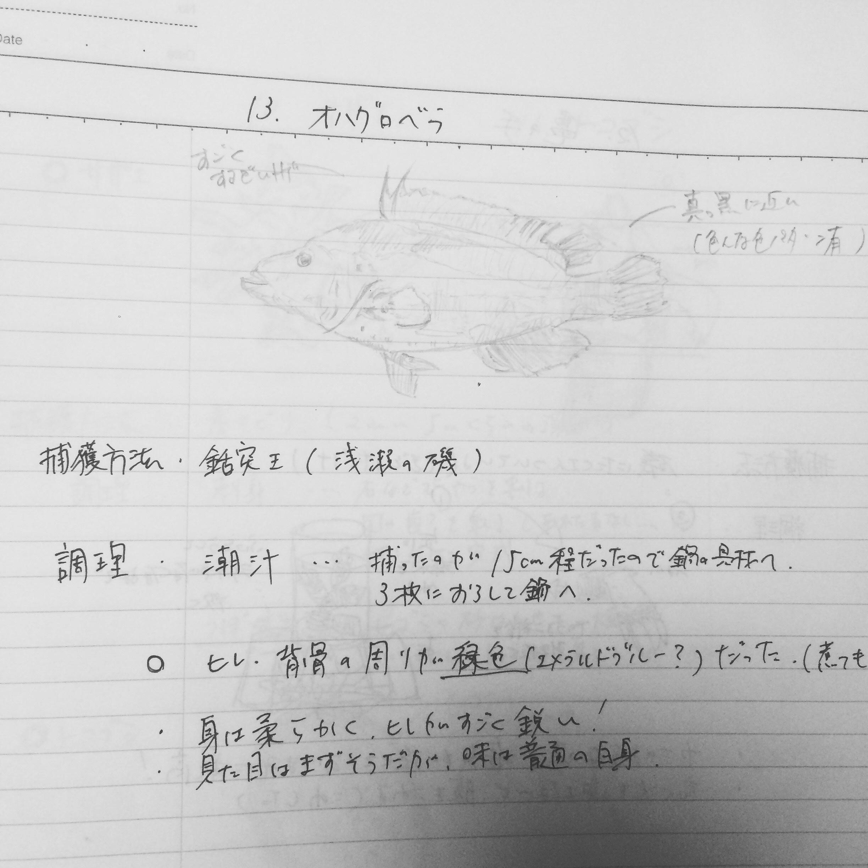 fc2blog_201507271352590bd.jpg