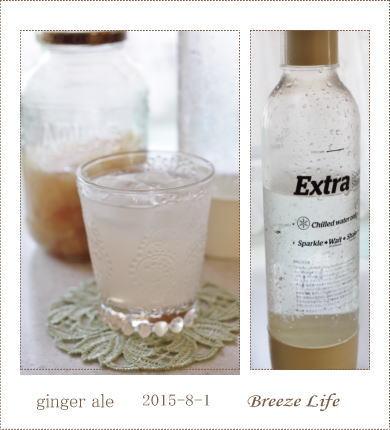ginger ale20150801