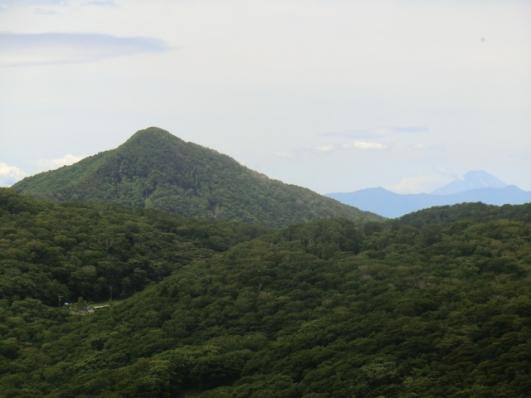 荒山と富士山