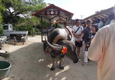 竹富島の風景5