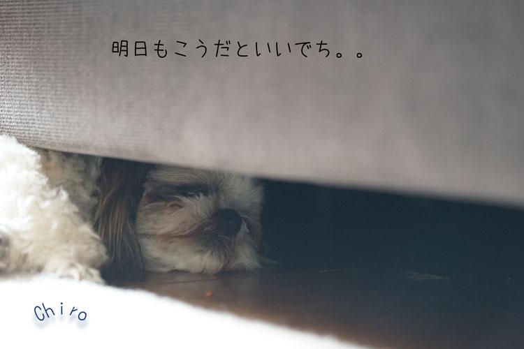08-07_2971.jpg