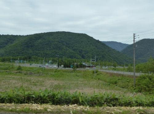 img2015-07-K-ai-Shirataki05.jpg