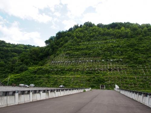 img2015-08-K-ai-Asahi08.jpg