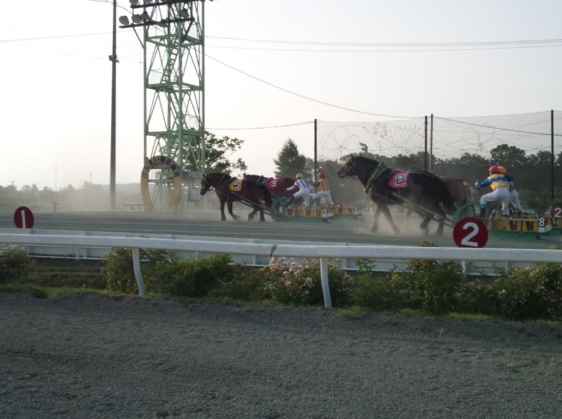 ばんえい競馬6