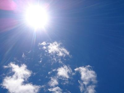 夏の日ざし