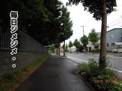 2015072401.jpg