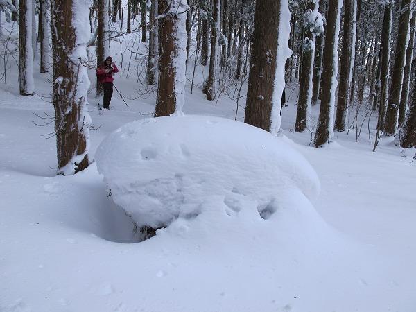 雪の芸術6