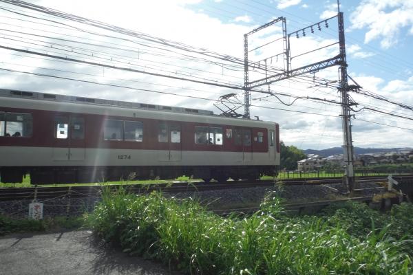 DSCF7439.jpg