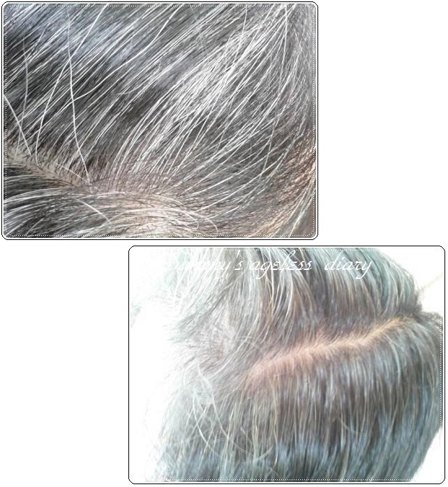 シムカラーEX 塗る前の白髪