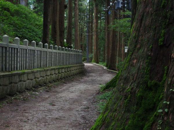 麒麟と散歩