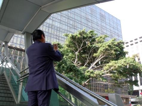 画像ー268 香港 008-2