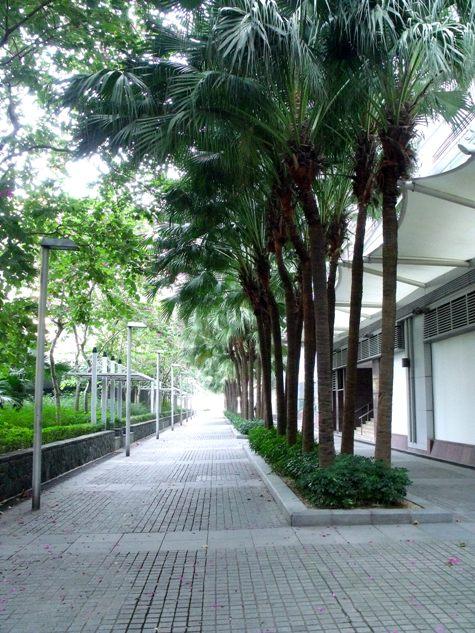 画像ー268 香港 028-2