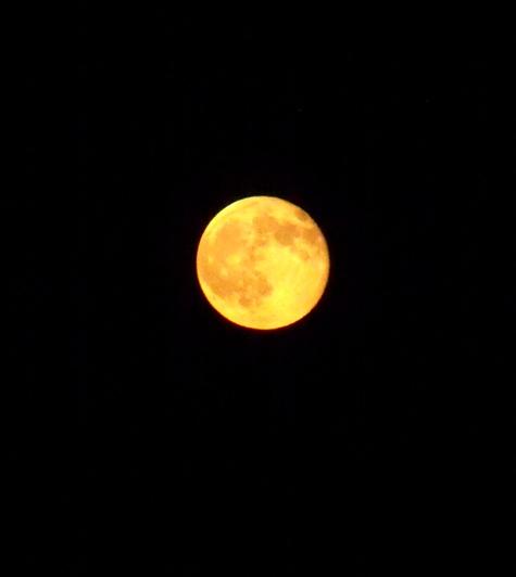 20150801満月の花火大会 222-2