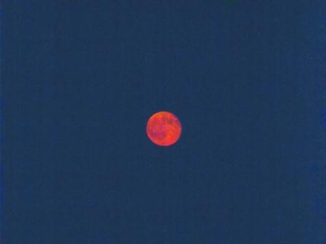20150801満月の花火大会 121-2