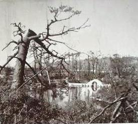 原爆被害の縮景園