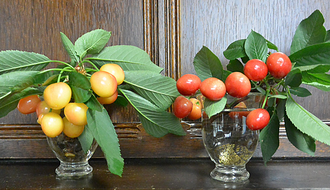 cherry201506