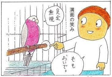 外出に乗り気になれない鳥③