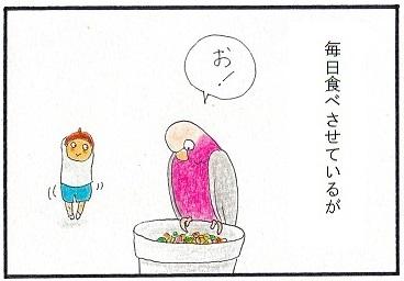 モモと一緒に野菜三昧③