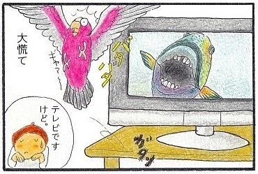 テレビですけど④