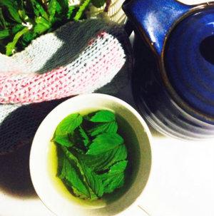 20150808 薄荷緑茶