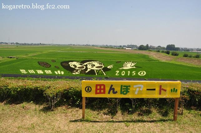 小山の田んぼアート(2)