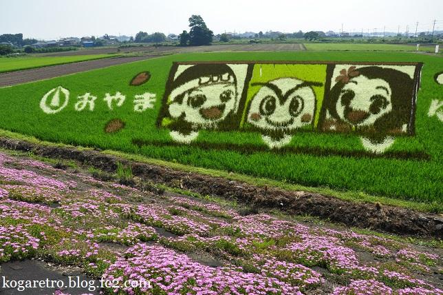 小山の田んぼアート(3)2