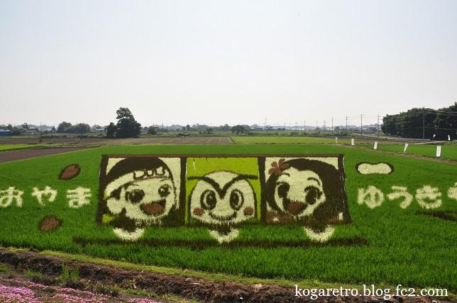 小山の田んぼアート(3)