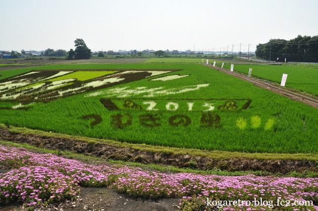 小山の田んぼアート(3)3