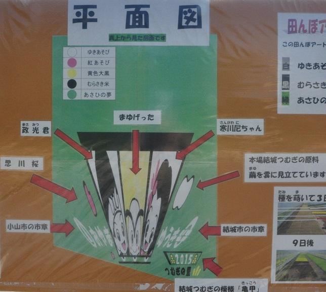 小山の田んぼアート(3)4