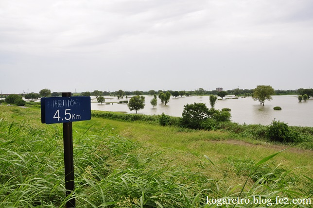古河ゴルフリンクス水没2