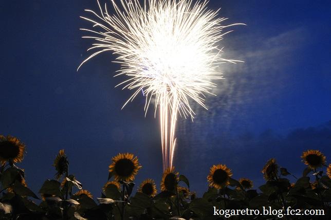 2015野木の花火