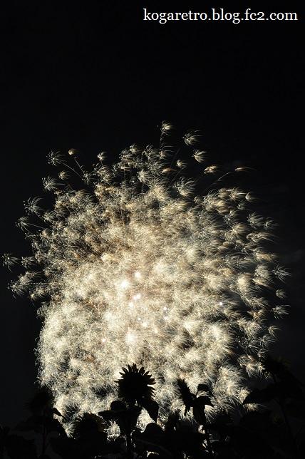 2015野木の花火3