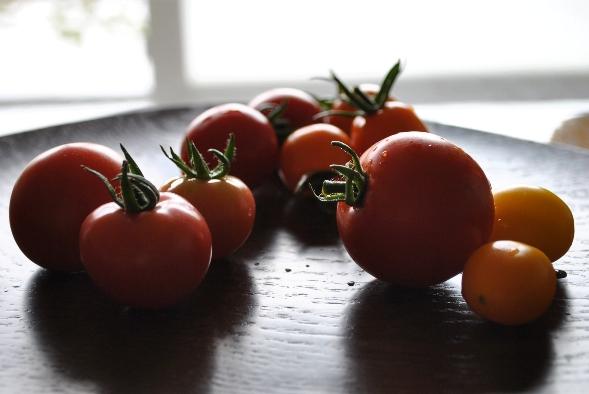 トマトたくさん