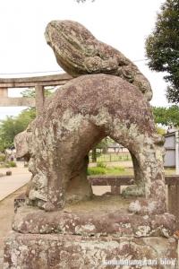 松江神社(松江市殿町)25