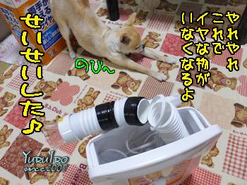 yuruiro20150701_k003